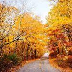 بهترین مکان برای سفر در پاییز
